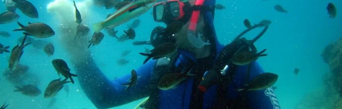 Scuba Diving Polichrono Halkidiki